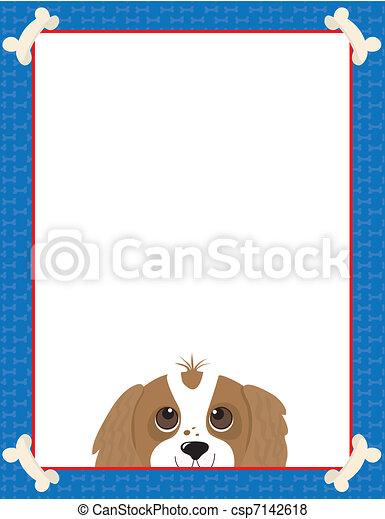 Cavalier King Charles Spaniel  - csp7142618