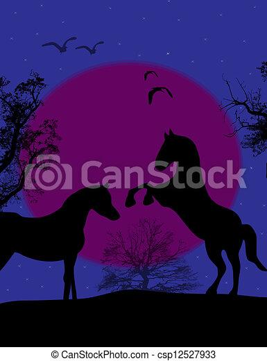 cavalli, blu, tramonto, due - csp12527933