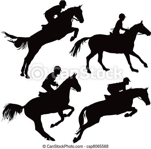 cavalli, saltare, cavalieri - csp8065568