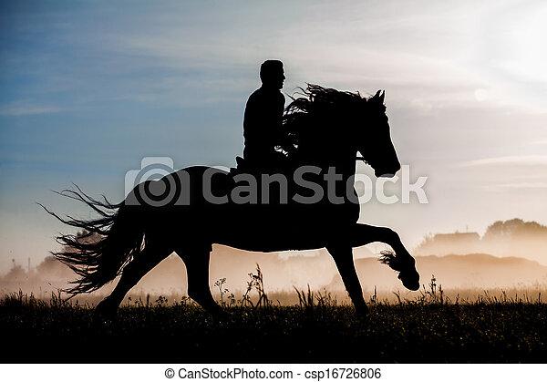 cavallo, silhouette, cavaliere - csp16726806