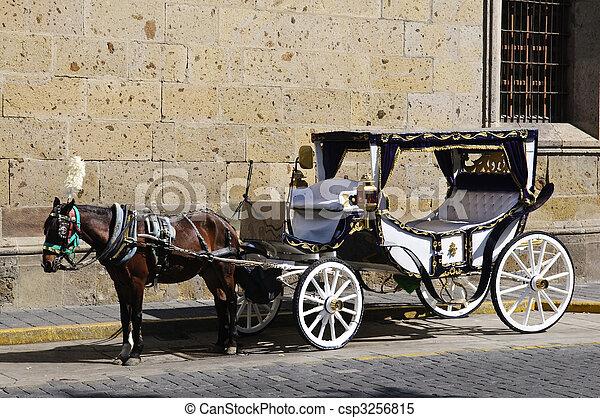 cavalo, méxico, guadalajara, carruagem, desenhado, jalisco - csp3256815