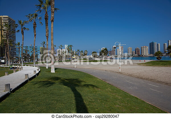 Cavancha Beach - csp29280047