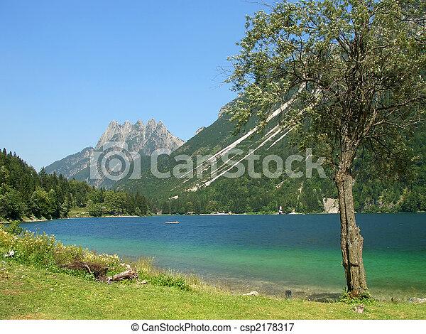 Cave del Predil lake and tree - csp2178317
