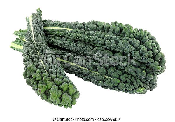 Cavolo nero hojas de col rizada - csp62979801