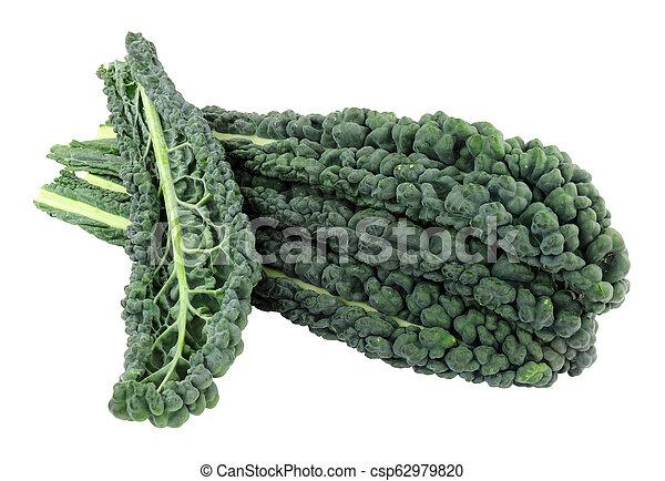 Cavolo nero hojas de col rizada - csp62979820