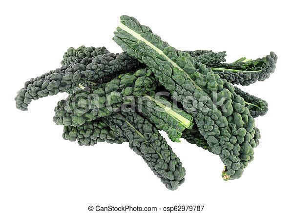 Cavolo nero hojas de col rizada - csp62979787