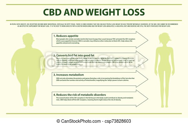 cbd, peso, infographic, horizontal, pérdida - csp73828603