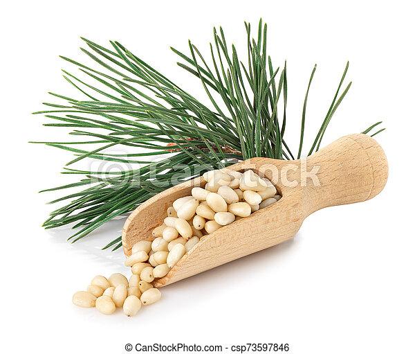 cedar nuts in wooden scoop - csp73597846