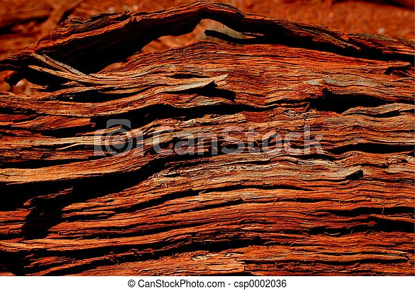 Cedar Woodgrain - csp0002036