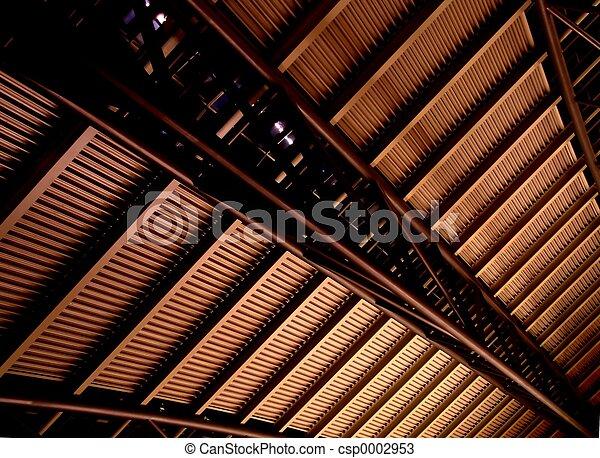 Ceiling - csp0002953