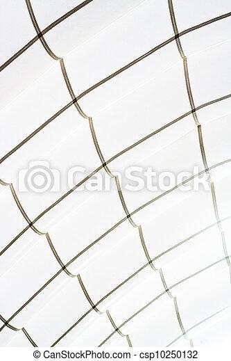 Ceiling - csp10250132