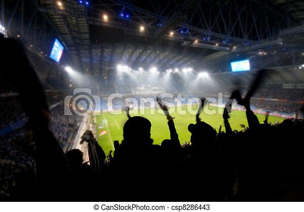 Fans celebrando gol - csp8286443