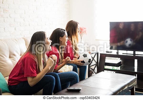 Fans del fútbol celebrando un gol - csp53403424