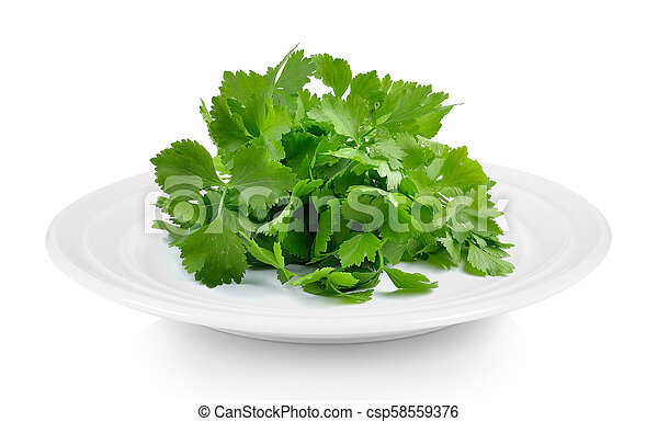 celery in plate on white background - csp58559376