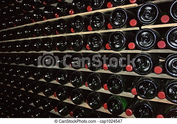 Cellar for sparkling wine - csp1024547