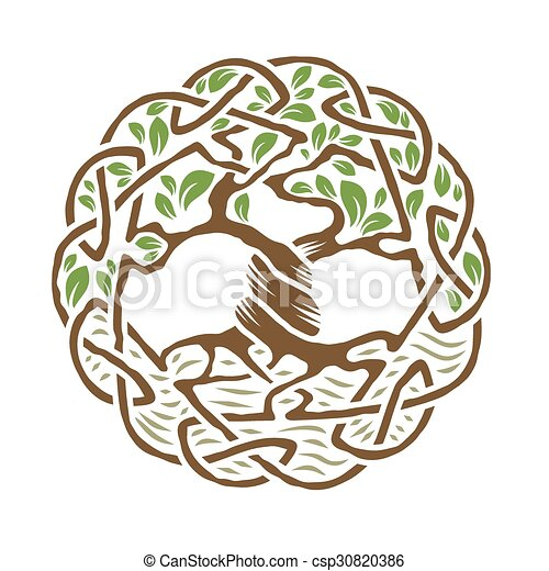 Celta árbol Vida Celta Color árbol Ilustración Vector