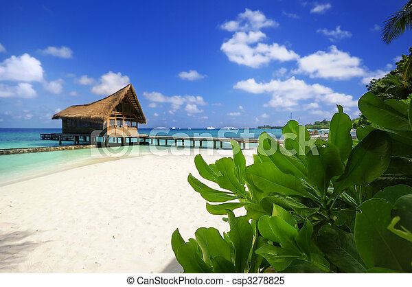 cena praia - csp3278825