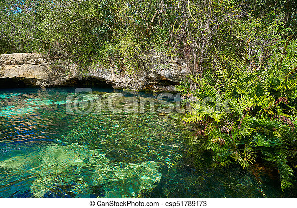 Cenote in Riviera Maya of Mayan Mexico - csp51789173