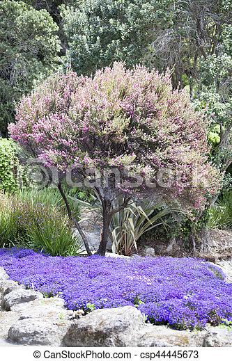 Centennial Gardens Colors - csp44445673