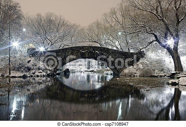 Central Park at night NYC - csp7108947