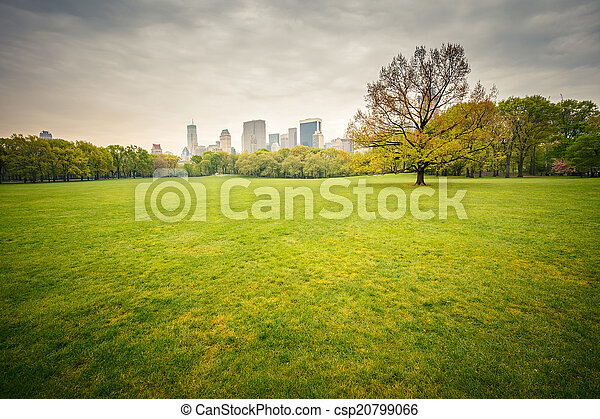 Central park at rainy day - csp20799066
