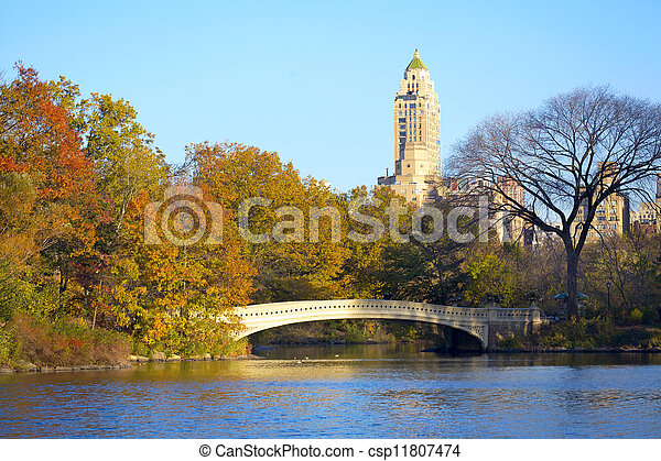 Central Park in NYC - csp11807474