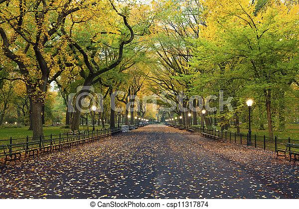 Central Park. - csp11317874