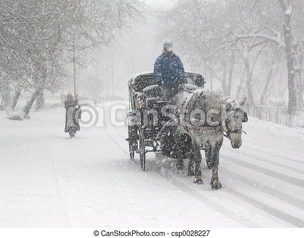 Central Park snow 2 - csp0028227