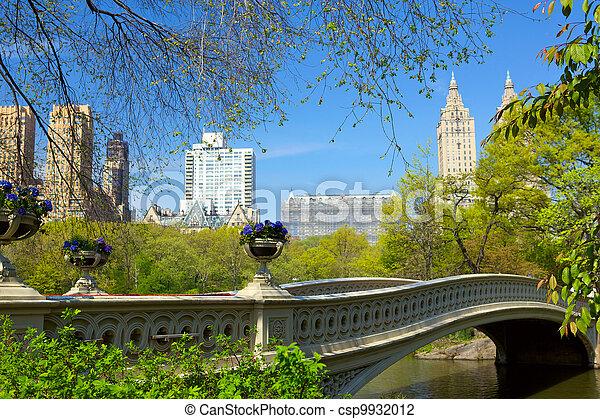 Central Park - csp9932012