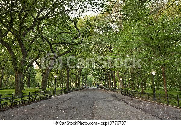Central Park. - csp10776707