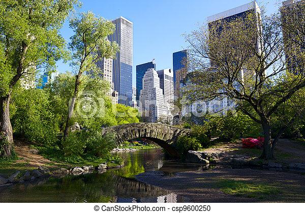 Central Park - csp9600250