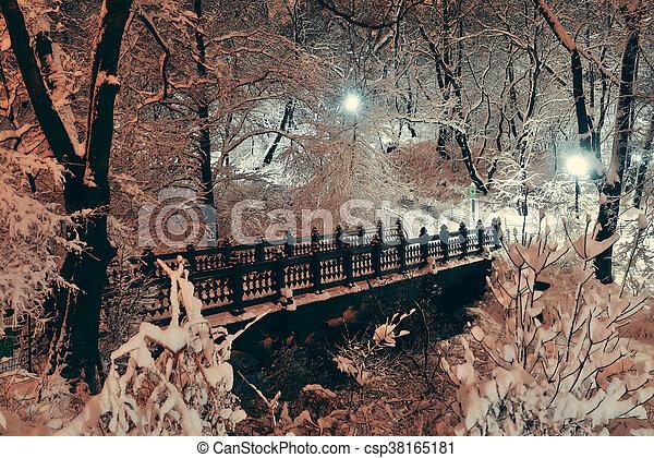 Central Park winter - csp38165181