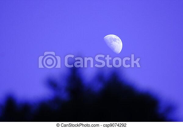 cerchio, luna, splendere - csp9074292