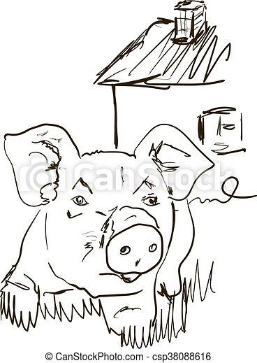 Cerdo - csp38088616