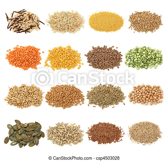 Cereal, grain and seeds collection - csp4503028