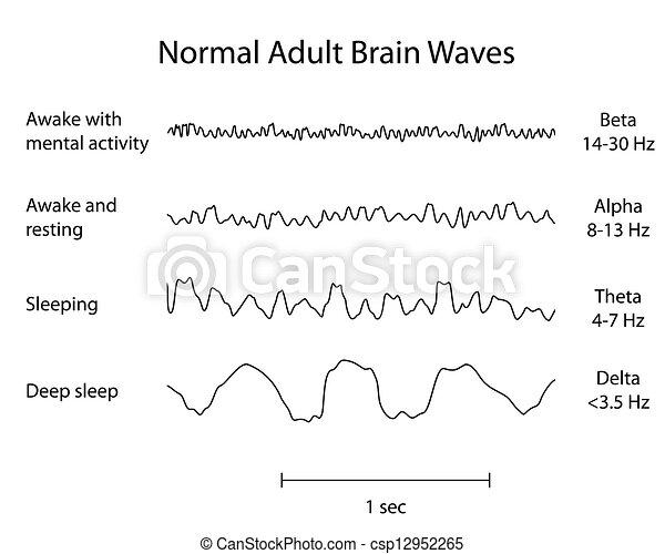 Ondas cerebrales normales eeg, eps8 - csp12952265