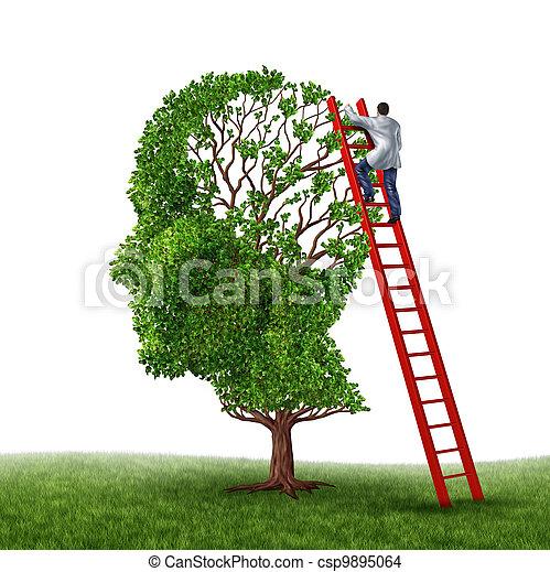 cerebro, examen - csp9895064