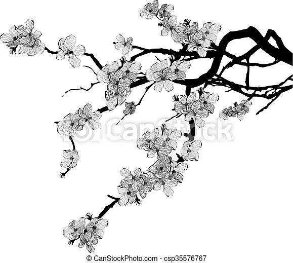 Cerisier Branche Vecteur 10 Arbre Couleurs Noir Blanc Cerise Eps Branche Illustration Canstock