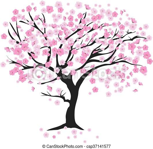 Cerisier Vent Fleur Cerise Vecteur Arbre