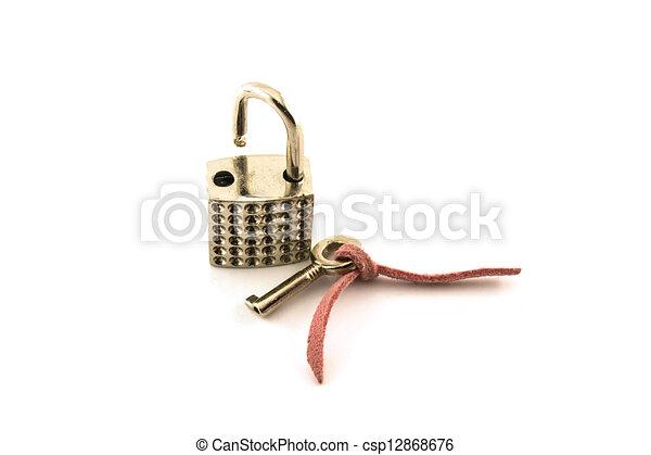 Cerrado - csp12868676