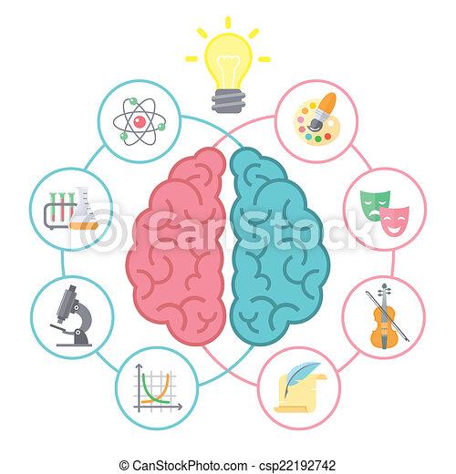 cerveau, concept - csp22192742