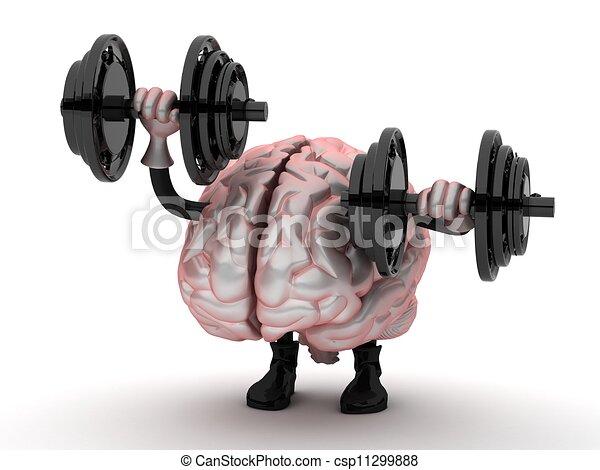 cerveau gym Hook up
