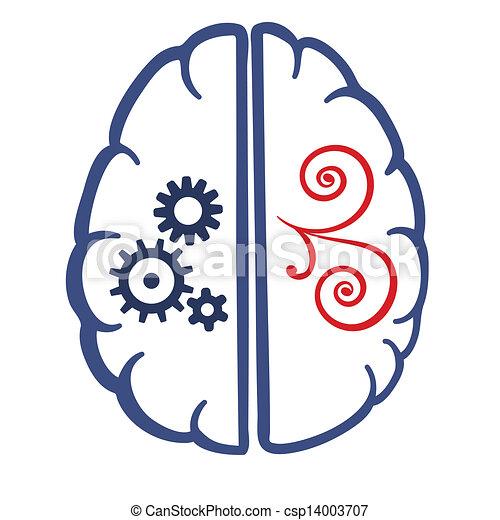 cerveau, parties, deux, humain - csp14003707