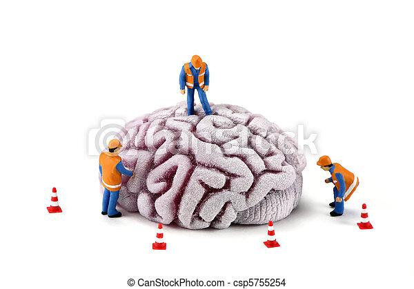 cervello, lavorante, costruzione, concept:, ispezionando - csp5755254