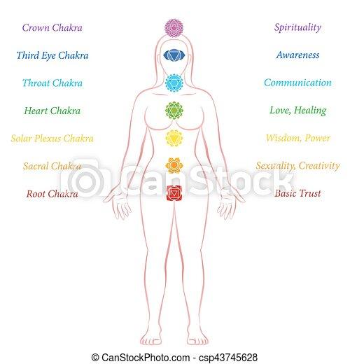 Chakras Woman Description Meanings Meditation Standing - csp43745628
