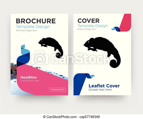 Chameleon brochure flyer design template with abstract photo ...
