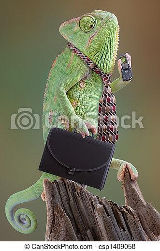 Chameleon Businessman - csp1409058