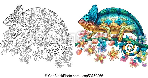 Chameleon Lizard Coloring Colorless And Color