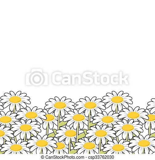 Chamomile. White flowers summer meadow. Beautiful wild flowers. Summer landscape and flowers. - csp33762030