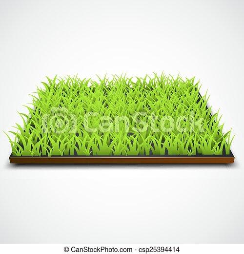 champ, carrée, herbe verte - csp25394414
